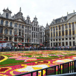 2010 Brussels Flower Carpet